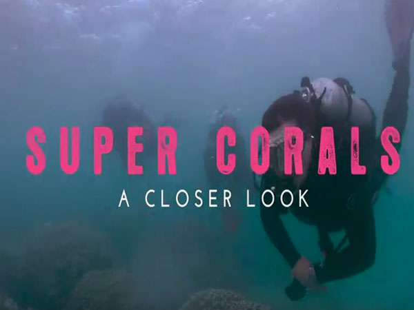 Link to video of Super Corals part 2