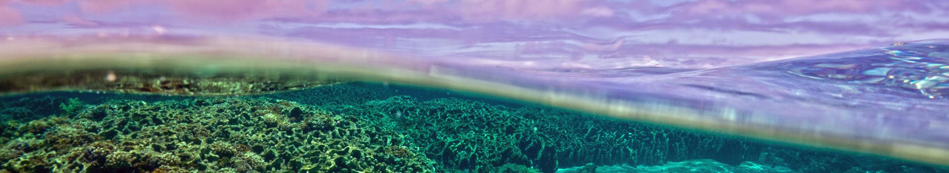 Kure lagoon