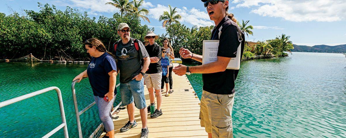 coconut island kaneohe Our guide, Leon, talks about the hammerhead sharks below. Photo: Aaron Yoshino/HAWAIʻI Magazine